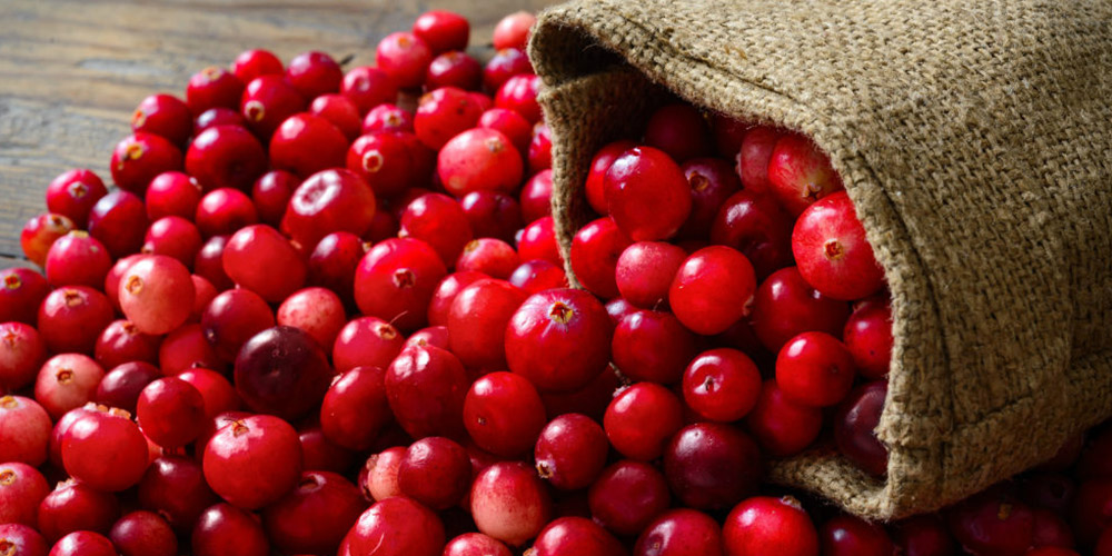 Merisoarele - antioxidantii naturali cu multiple virtuti terapeutice